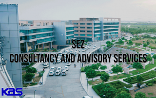 SEZ Consultancy Firm in India
