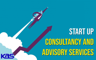 Start Up Consultant in Delhi India